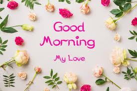 khubsurat good morning shayari-khubsurat good morning shayari sms