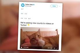 cara download video twitter tanpa aplikasi tambahan
