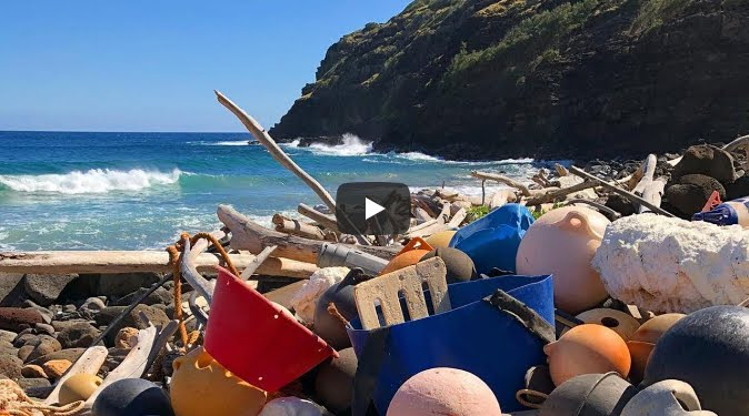 Il primo paese dell'America Latina a proibire la borsa di plastica