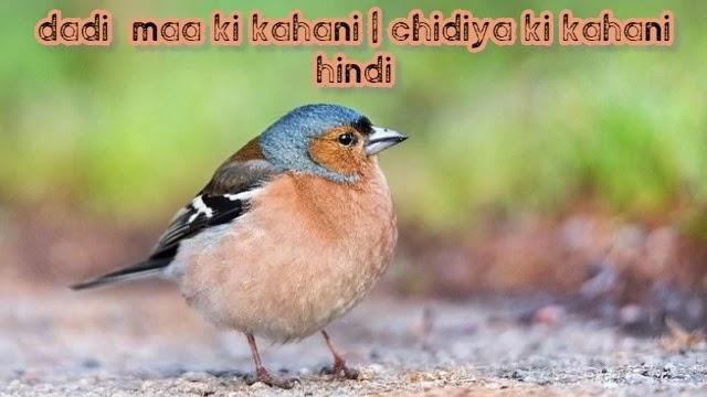 dadi  maa ki kahani   chidiya ki kahani hindi