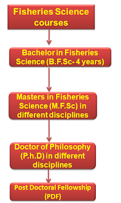 Fisheries courses