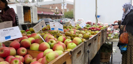 Bins of apples damp from a mist or light rain.