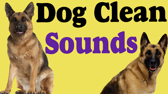 Best dog sounds effects new 2021 Download