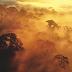 A Amazônia e o clima mundial