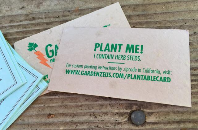 garden herbs paper cards