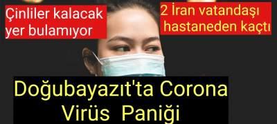 Corona virüs