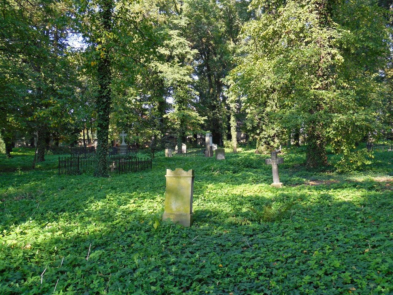Cmentarz ewangelicki we Wschowie ma swój niepowtarzalny klimat.