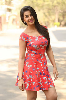 Actress Nikki Galrani Latest Pictures in Floral Short Dress at Malupu Movie Release Date Press Meet  0013.jpg