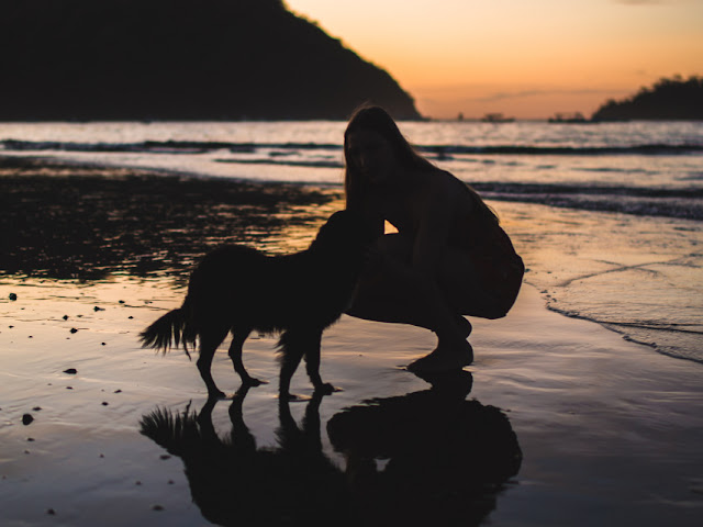 A woman kneels with a dog on a beach at sunset