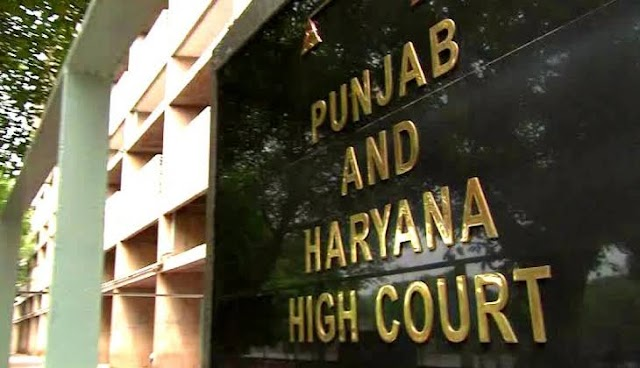 Every citizen has the right to criticize the government, but the language should be decent: Punjab and Haryana High Court