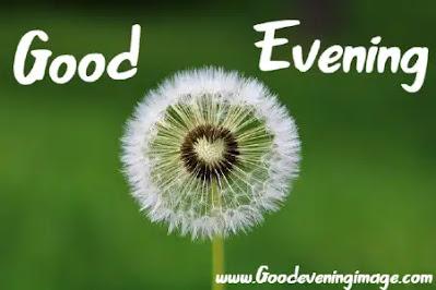 Good Evening Photos HD