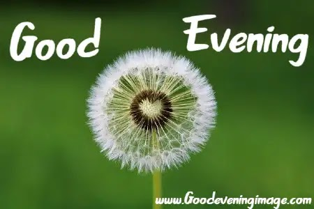 Good Evening Wishes, Quotes, Pictures