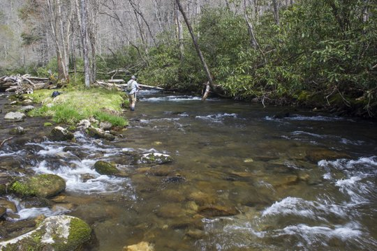 Deep Creek fly fishing in the Great Smoky Mountains National Park