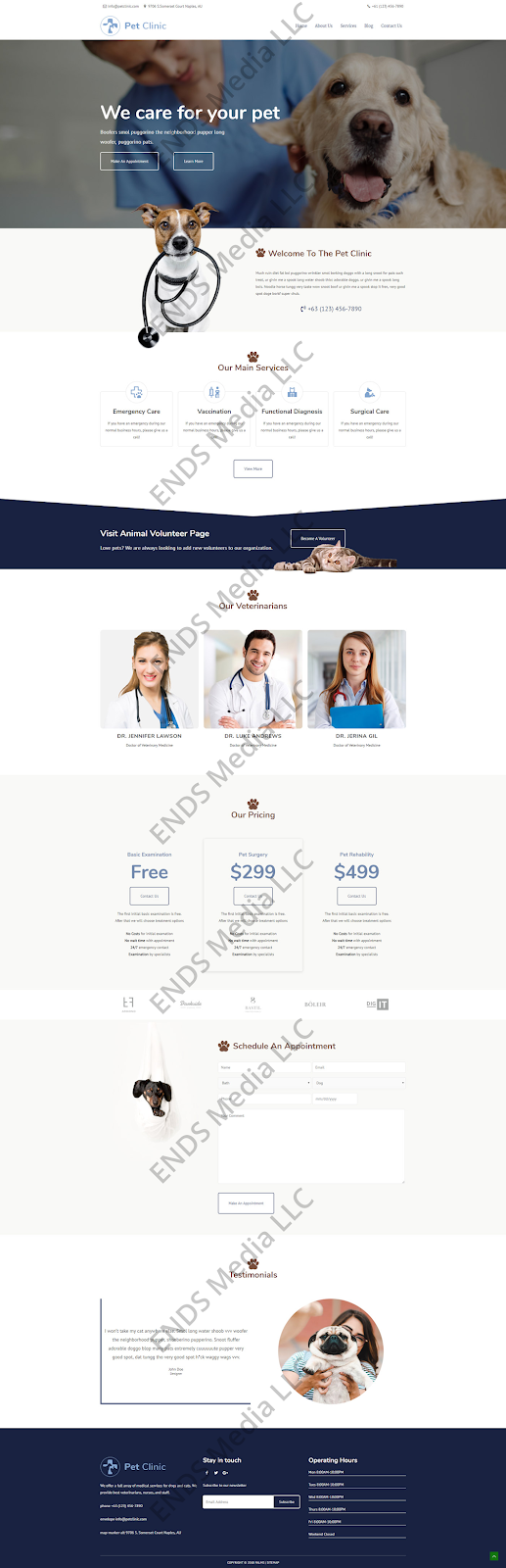 ENDS Media Health Industry, Wellness, and Veterinarian Web site design Portfolio