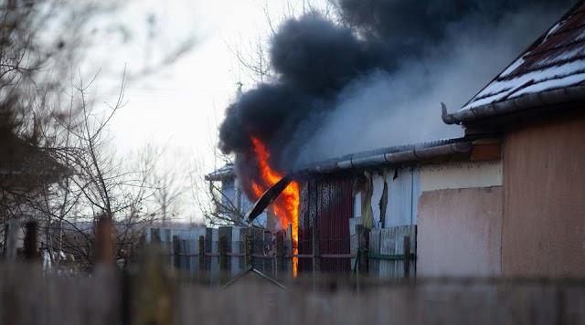 Több mint hatvan gekkó pusztult el a hajdúböszörményi tűzben