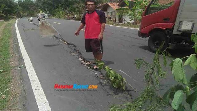 Alasan-Pohon-Ditanam-di-Jalan-Nasional-Pangandaran-KM-10
