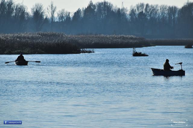Rzeszowski zalew to nie tylko ptaki i przebogata roślinność