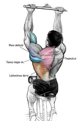 close grip pull down,back workout for men,lean muscles back,how build lean body