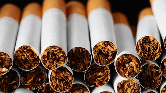 Banyak yang menilai bahwa rokok mempunyai dampak jelek kepada perokok maupun lingkunganny 12 Khasiat dan Manfaat Rokok Bagi Kesehatan Dibalik Dampak Buruknya