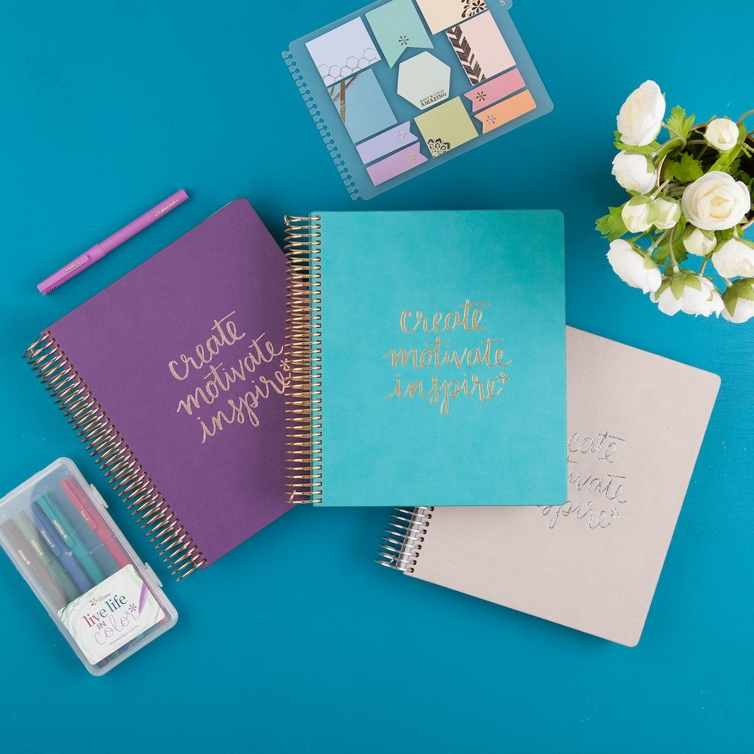 Homework biography business plan dissertation essay