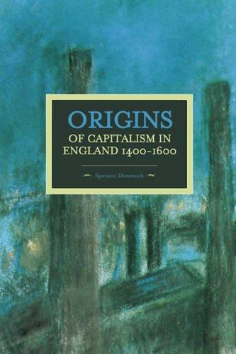 the history of capitalism essay