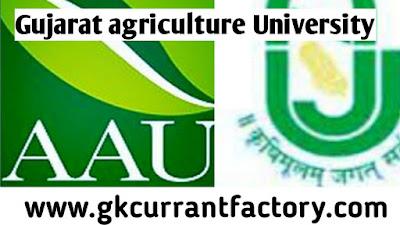 Gujarat agriculture University jobs, gujarat jobs