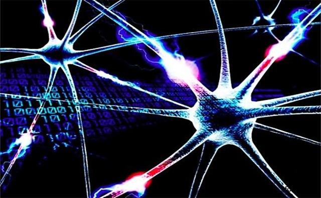 Resultado de imagen de Neuronas sin fin (cien mil millones) que generan conexiones e impulsos eléctricos que, como vehículos lúmínicos transportan ideas y sentimientos