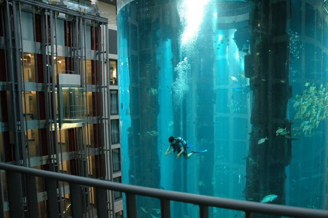 Aquarium dengan 1500 ikan di dalamnya