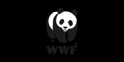 Panda suka kotoran kuda