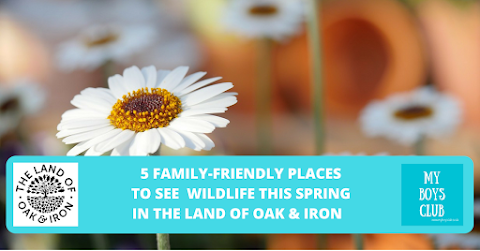 5 family-friendly places to see wildlife this spring in the Land of Oak & Iron (AD)