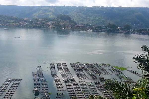 Keramba jaring apung di Danau Toba. Foto: Sapariah Saturi