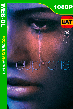 Euphoria (TV Series) S01E05 (2019) Latino HD WEB-DL 1080P - 2019