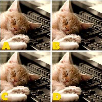 Which image is different? image 34