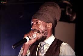 fair use, reggae artist,reggae music,