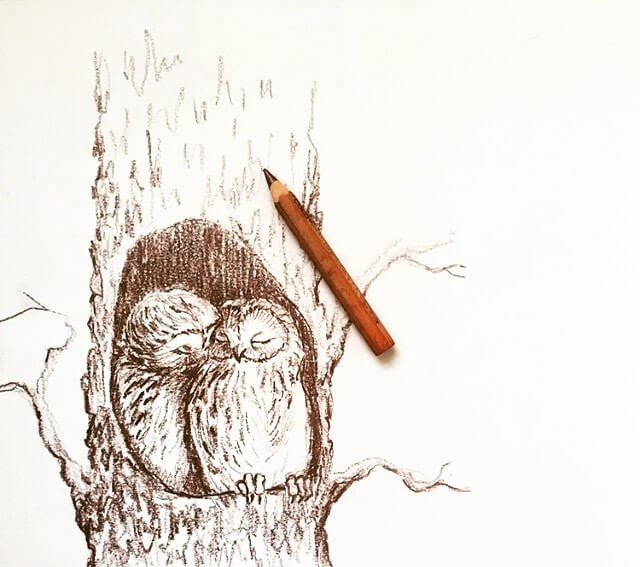 08-Nesting-owls-Farbe-Und-Fabeln-www-designstack-co