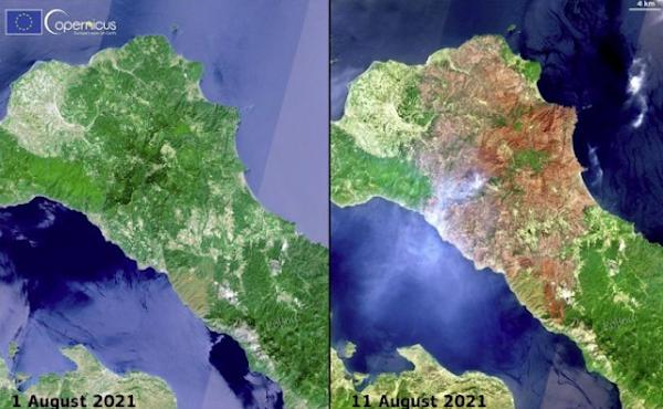 """Για να δούμε λοιπόν τι """"σώθηκε"""" στην Εύβοια; Εικόνα από δορυφόρο"""