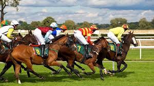 28 Temmuz Elazığ At Yarışı Galopları