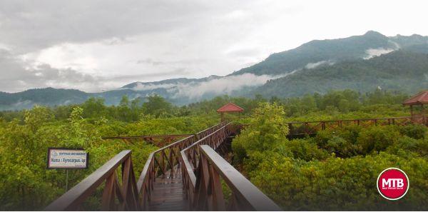 My Trip in Jembatan Galau - Mangrovenya Trenggalek
