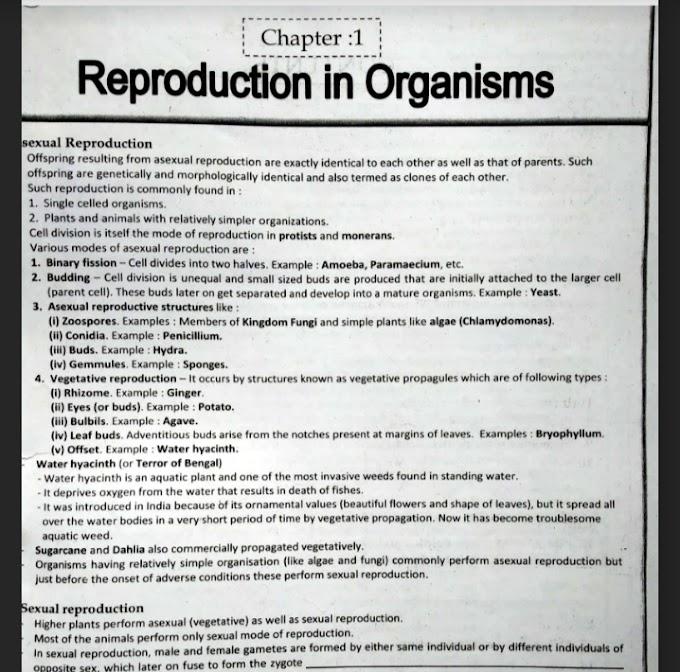 Biology Module For NEET BY ALLEN KOTA[all Chapter book]