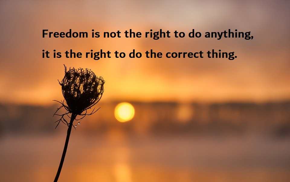 Freedom Quotes | Short Positive Inspirational Quotes