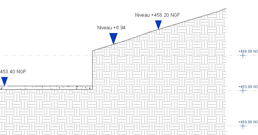 Revit-Mémo: Revit 2014_Niveaux NGF et Projet, en coupe et