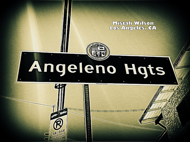 Angeleno Heights, Los Angeles, California by Mistah Wilson