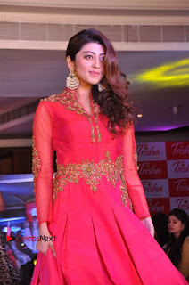 South Indian Celebrities Pos at Love For Handloom Collection Fashion Show  0051.jpg