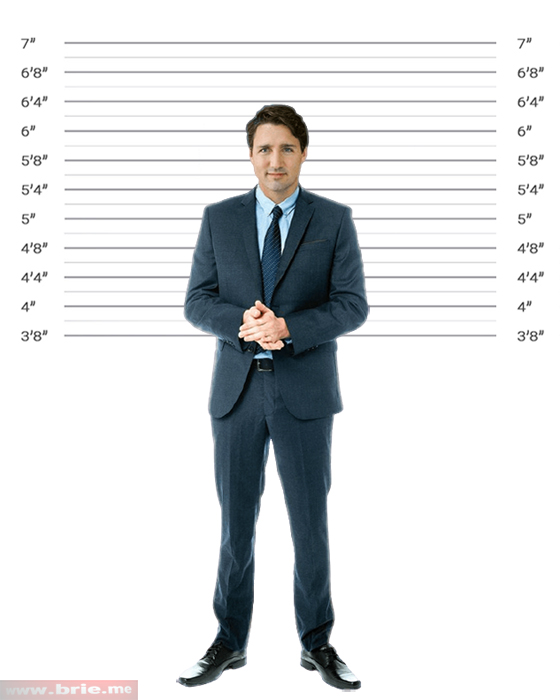 Justin Trudeau standing in height background