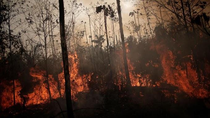 Polícia do Pará identifica suspeitos de provocar queimadas na Amazônia