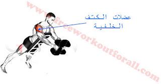 التمرين سيتهدف عضلات الكتف الامامية والجانبية بنسبة ضئيلة .