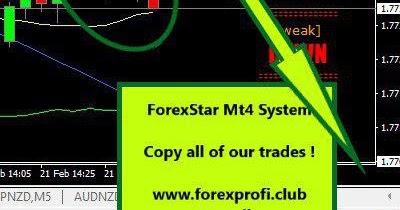 Forex trading no verification
