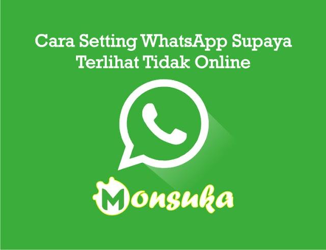 Cara Membuat WhatsApp (WA) Terlihat Tidak Online di Android