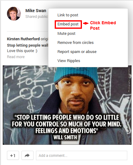Google+ Embed Post