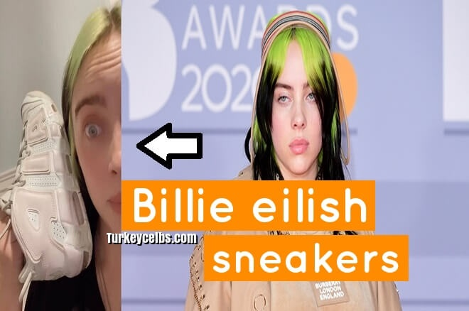 Billie eilish sneakers no one can agree on what color these shoes are .